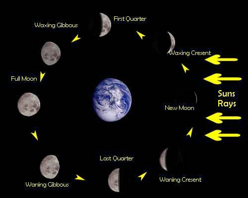 all 8 phases of the moon new calendar template site. Black Bedroom Furniture Sets. Home Design Ideas