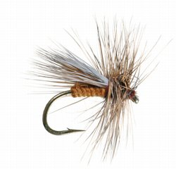 Chucks Caddis Variant Dry Fly
