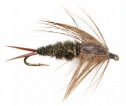 fly of the month club   20 incher
