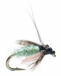 Caddis Pupa Fly