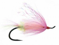 Veiled Assassin Steelhead Fly