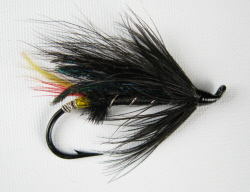 Black Dose Hairwing Salmon Fly