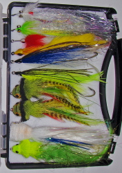Pike/Muskie Guide Fly Selection-10 Flies
