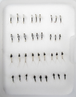 Insect Life Cycle Fly Selection - Trico