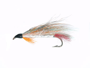 Little Trout Streamer Fly