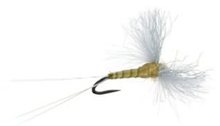 CDC Biot Spinner Fly