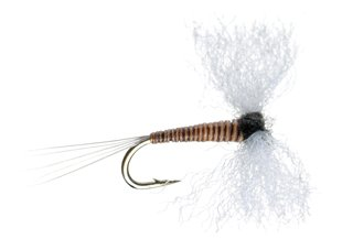 Trico Male Poly Spinner Fly