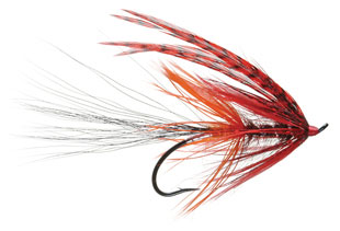 Nathan's Magic Spey Fly