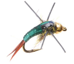 Rubber Leg Copper John Tungsten Bead Head Nymph