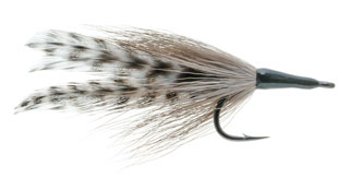 Cockroach Tarpon Fly