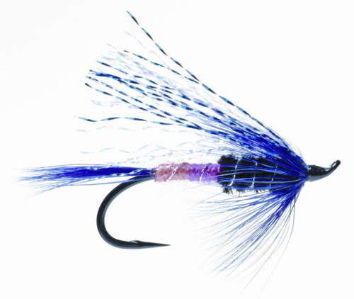 Freight Train Steelhead Fly