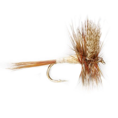 Gray Fox Dry Fly