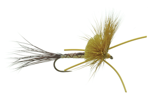 Nealley's Hex Adult Dry Fly