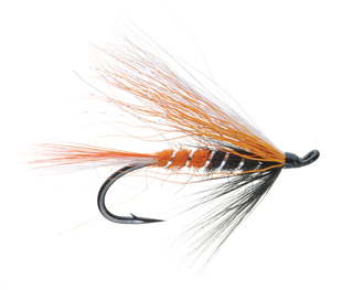 Max Canyon Steelhead Fly