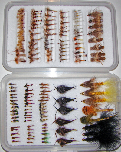 Trout Master Fly Selection-146 Flies