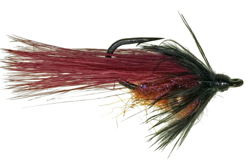Backstabber Carp Fly