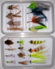 Belize/Yucatan Standard Fly Selection-15 Flies